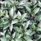 Basil Seeds - Clove Scented