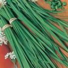 Garlic Chive Seeds
