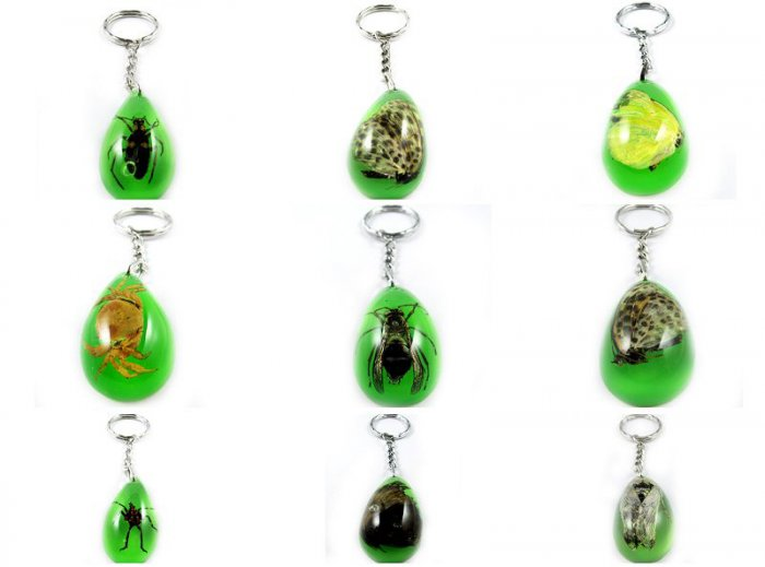 Wholesale Lot 6 Insect Bug Oval Shape Key Chain Keyring