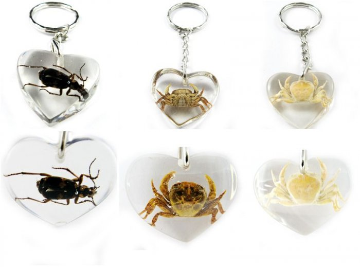 Wholesale Lot 6 Insect Bug Heart Key Chain Keyring New