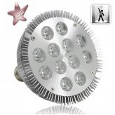 12W LED Spotlight Bulb