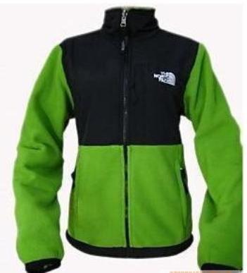 NWT North Face Denali Jacket Women's Green Grey Sz S
