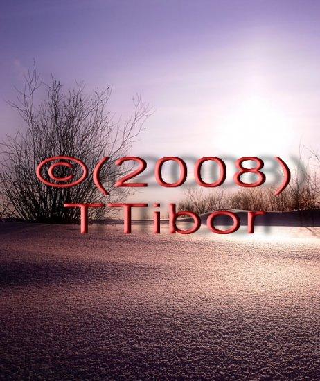 Winter*52*