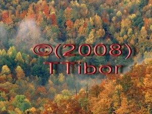 Autumn*48*