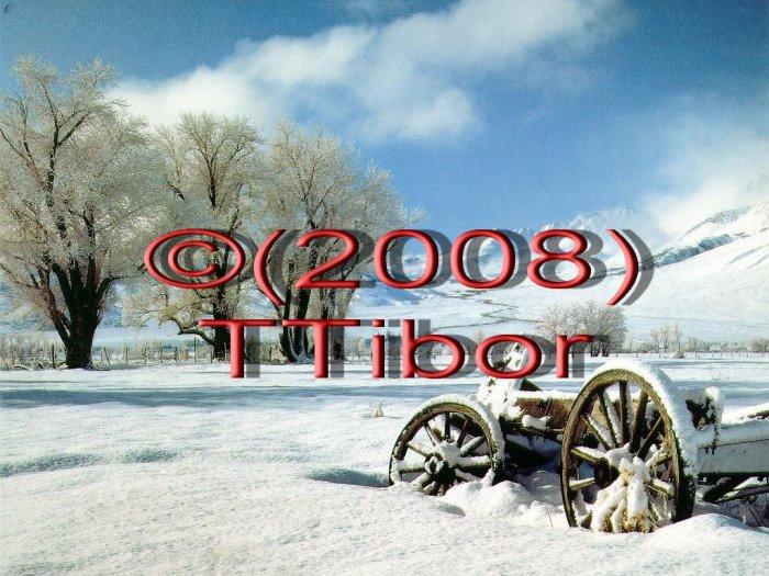 Winter*04*
