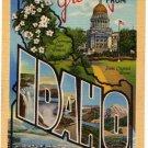 IDAHO large letter linen postcard Teich