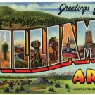 WILLIAMS, Arizona large letter linen postcard Teich