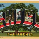 CHICO, California large letter linen postcard Teich