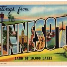 MINNESOTA large letter linen postcard Teich