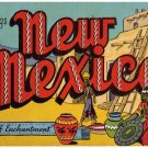 NEW MEXICO large letter linen postcard Kropp