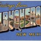 ALBUQUERQUE, New Mexico large letter linen postcard Teich
