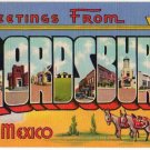 LORDSBURG, New Mexico large letter linen postcard Teich