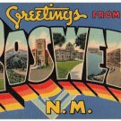 ROSWELL, New Mexico large letter linen postcard Teich