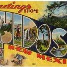 RUIDOSO, New Mexico large letter linen postcard Teich