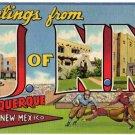 UNIVERSITY OF NEW MEXICO large letter linen postcard Teich