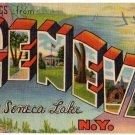 GENEVA, New York large letter linen postcard Teich