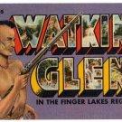 WATKINS GLEN, New York large letter linen postcard Teich