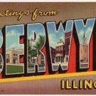 BERWYN, Illinois large letter linen postcard Teich