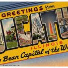 DECATUR, Illinois large letter linen postcard Teich