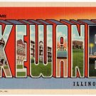 KEWANEE, Illinois large letter linen postcard Teich
