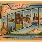 OREGON large letter linen postcard Teich