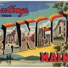 BANGOR, Maine large letter linen postcard Teich