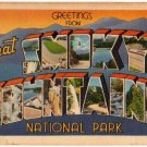 GREAT SMOKY MOUNTAINS, Tennessee large letter linen postcard Tichnor