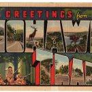 MOHAWK TRAIL, Massachusetts large letter linen postcard Teich