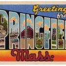 SPRINGFIELD, Massachusetts large letter linen postcard Teich