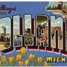 HOLLAND, Michigan large letter linen postcard Teich
