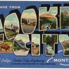 COOKE CITY, Montana large letter linen postcard Teich