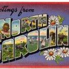 NORTH CAROLINA large letter linen postcard Colourpicture
