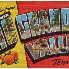 Lower RIO GRANDE VALLEY, Texas large letter linen postcard Kropp