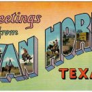 VAN HORN, Texas large letter linen postcard Colourpicture