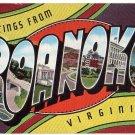 ROANOKE, Virginia large letter linen postcard Kropp