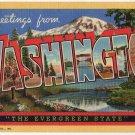 WASHINGTON large letter linen postcard Teich