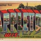 APPLETON, Wisconsin large letter linen postcard Teich