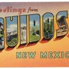 RUIDOSO, New Mexico large letter linen postcard Colourpicture