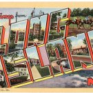 LONG ISLAND, New York large letter linen postcard Teich
