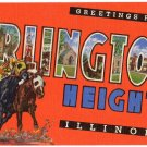ARLINGTON HEIGHTS, Illinois large letter linen postcard Teich