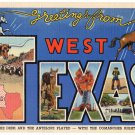 WEST TEXAS large letter linen postcard Teich