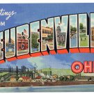 STEUBENVILLE, Ohio large letter linen postcard Teich