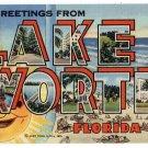 LAKE WORTH, Florida large letter linen postcard Teich
