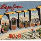 DOTHAN, Alabama large letter linen postcard Teich