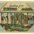 OSHKOSH, Wisconsin large letter linen postcard Dexter