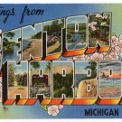 BENTON HARBOR, Michigan large letter linen postcard Tichnor