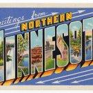 NORTHERN MINNESOTA large letter linen postcard Teich