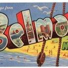 BELMAR, New Jersey large letter linen postcard Teich
