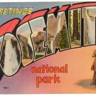 YOSEMITE, California large letter linen postcard Metropolitan