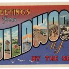 WILDWOOD BY-THE-SEA, New Jersey large letter linen postcard Teich
